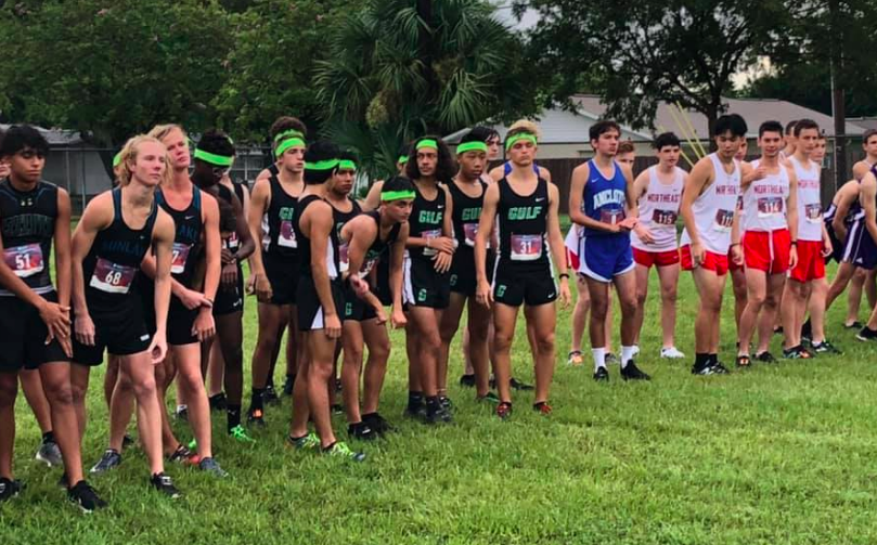 Cross Country Teams Begin Season on High Note